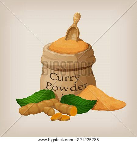 Powder of curry in a canvas bag and roots of turmeric, curcuma. Vector illustration EPS10