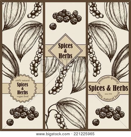 Banner set with hand drawn black pepper. Vector illustration EPS10