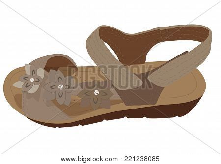 Vector Light Brown Sandal, Profile View. Summer Woman's Shoes in Beige Colours. Woman's Sandal in Beige Colours