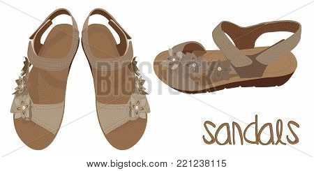 Vector Light Brown Sandals, Fashionable Look. Illustration of Summer Woman's Shoes in Beige Colours. Vector Drawing of Fashionable Look of Woman's Sandals in Beige Colours