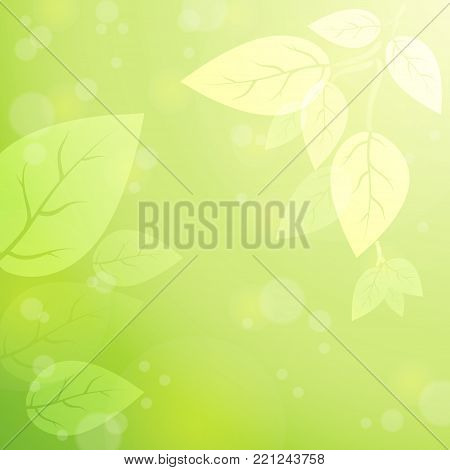 Fresh, gentle nature in the rays of light. Spring nature background. Leaves in the sun rays. Vector. Eps 10.