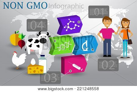 Not chemical GMO hormone food infographic concept Vector