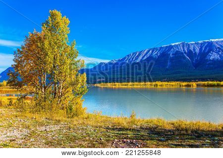 Abraham Lake is an artificial lake in the Rockies of Canada. Mountains are reflected in the smooth water of lake. Sunny September Day. Concept of ecological and active tourism