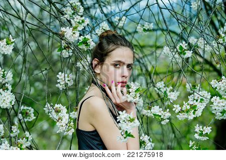 Girl or woman in garden with blossoming trees on floral environment. Spring, youth, natural beauty, flourishing, growth concept
