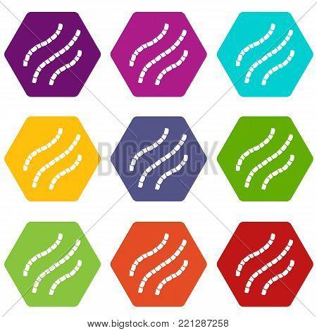 Escherichia coli icon set many color hexahedron isolated on white vector illustration