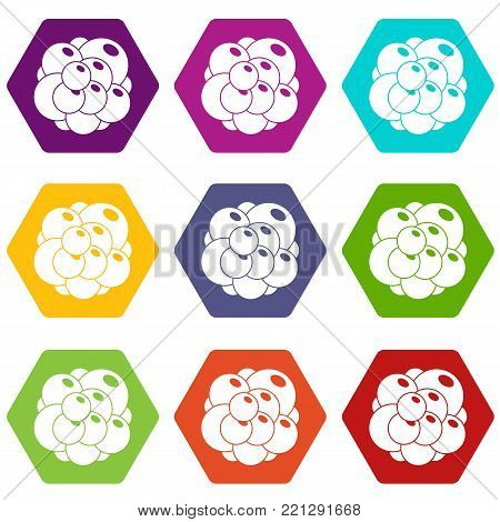 Ovary icon set many color hexahedron isolated on white vector illustration