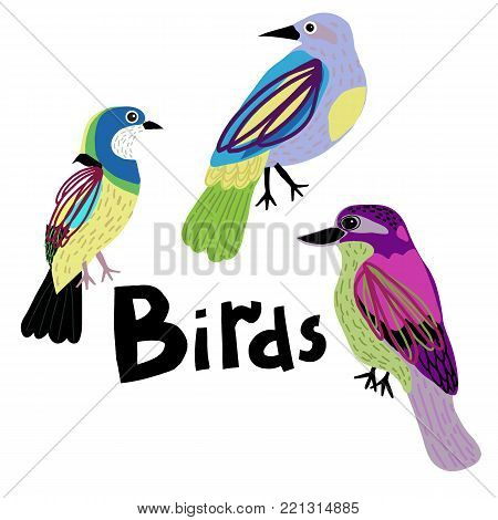 Set of colorful birds. Bright and spring illustration.