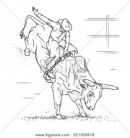 bull riding on white vector photo free trial bigstock
