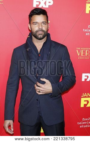 LOS ANGELES - JAN 8:  Ricky Martin at the