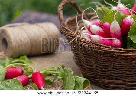 Bunch Of Fresh Radishes In A Wooden Box Outdoors On The Table. Bunch Of Fresh Radishes In A Wooden B
