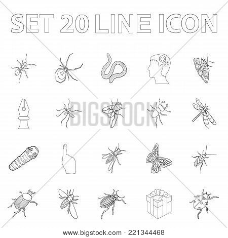 Different kinds of insects outline icons in set collection for design. Insect arthropod vector isometric symbol stock  illustration.