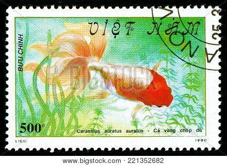 Ukraine - circa 2018: A postage stamp printed in Vietnam shows drawing fish Red-headed Oranda or Carassius auratus auratus. Series: Fish - Goldfish, Veil-tailed. Circa 1990