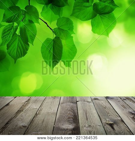 Abstract Spring Background with Empty Wooden Table, Green Bokeh and Linden Leaves. Spring or Summer Background Border