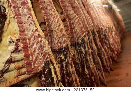 CARCASSES OF FRESHLY SLAUGHTERED COWS HANGING IN ABATTOIR