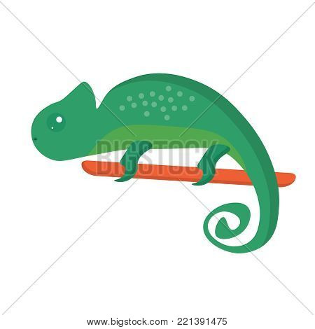 Cute green chameleon sitting on branch. Chameleon icon. Flat cartoon illustration of sitting chameleon. Exotic animal isolated on white background. Summer tropical graphic element. Tropical animal.
