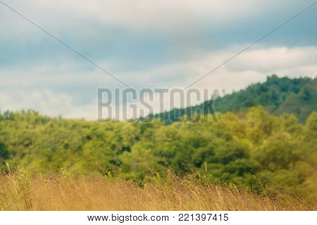 Outdoor countryside meadow nature of countryside village in Russia