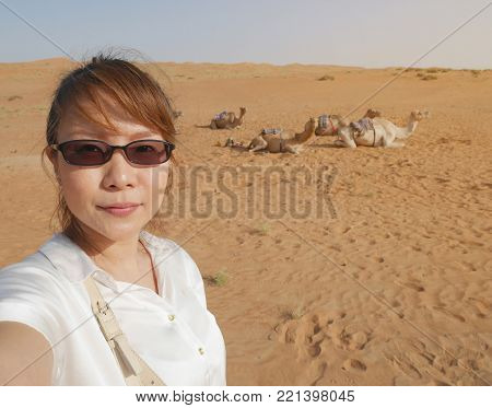 Asian female tourist taking selfie at Wahiba desert in Oman with background of camels herd sitting on hot sand, waiting for camel ride activity
