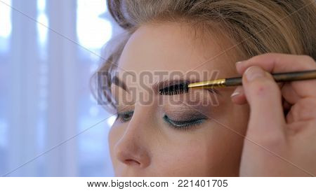 Professional make-up artist combing eyebrows of client. Beauty, visage and fashion concept