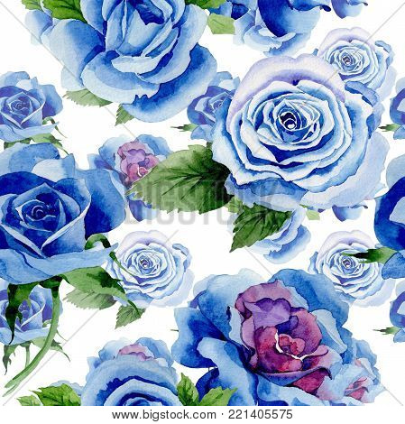 Wildflower blue rose flower pattern in a watercolor style. Full name of the plant: rose, hulthemia, rosa. Aquarelle wild flower for background, texture, wrapper pattern, frame or border.