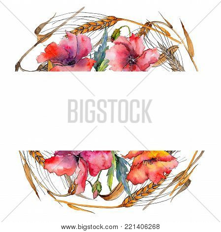 Wildflower spica flower wreath in a watercolor style. Full name of the plant: ear, spike, spica. Aquarelle wild flower for background, texture, wrapper pattern, frame or border.