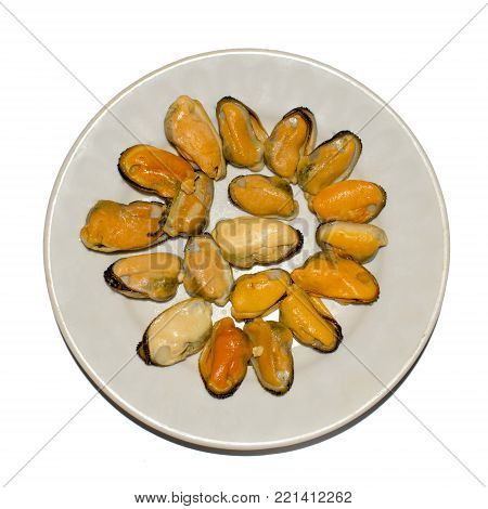 Fresh mussels on a white background. Mussels on an isolated background on a light plate