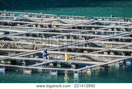 Cages for fish farming in Bosnia and Herzegovina
