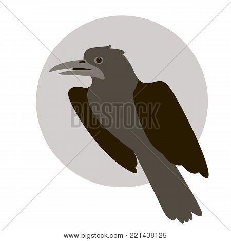 raven  bird vector illustration flat style   profile side