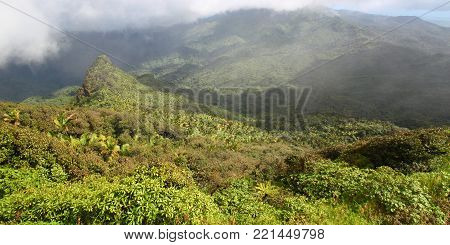Misty clouds sweep over the rainforest in the mountains of El Yunque National Forest Puerto Rico