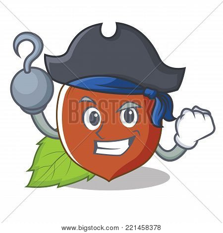 Pirate hazelnut character cartoon style vector illustration