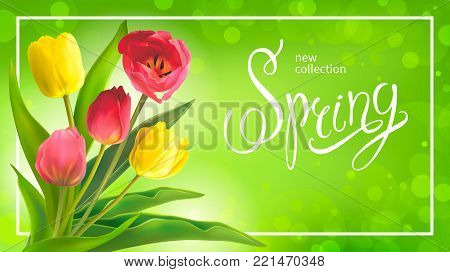 Beautiful Spring bouquet of red and yellow tulips on a green background. Template for greeting card and banners on 8 March, Mother s Day, Birthday, Spring Sale. Vector illustration, EPS10 format.