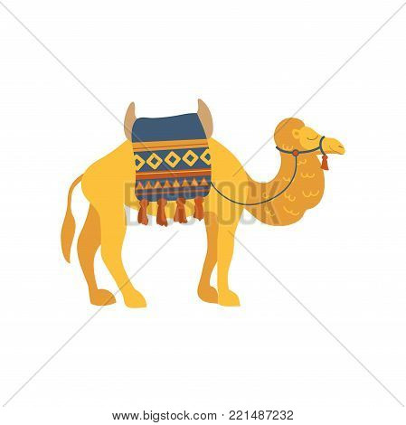 Camel whit saddle and cover on the back, two humped desert animal cartoon vector Illustration on a white background