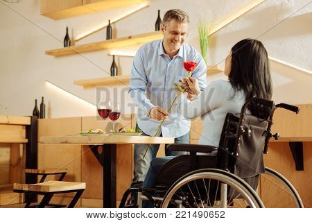 Red rose. Good-looking inspired blond man smiling and giving a red flower to his beloved dark-haired disabled woman while having romantic dinner