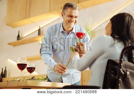 Flower. Good-looking joyful well-built man smiling and giving a red flower to his beloved dark-haired handicapped woman while having romantic dinner