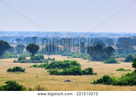 Queen Elizabeth National Park  landscape at sunrise. Uganda, Africa