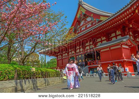 Tokyo, Japan - April 19, 2017: Asakusa popular icons: Kannon Temple in Senso-ji the oldest shrine in Tokyo, cherry blossom in spring sakura, the national flower of Japan and women in japanese kimonos.