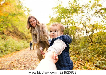 Beautiful young family on a walk in forest. Mother with son in warm clothes outside in colorful autumn nature. Littli boy holding hand of unrecognizable person.