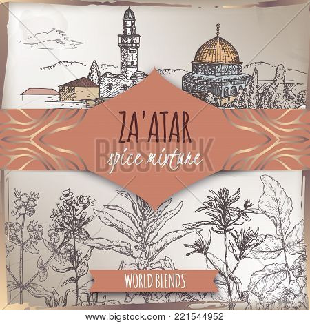 Zaatar template with Jerusalem city landscape, Syrian oregano, Sumac, sesame, thyme and savory sketch. Culinary herbs collection. Great for cooking, medical, gardening design.