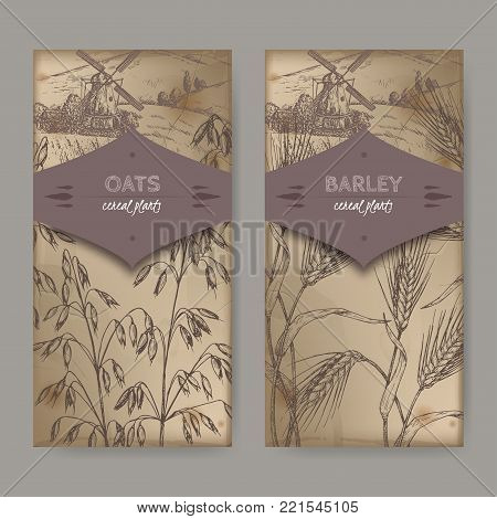 Set of two labels with Barley aka Hordeum vulgare, oats aka Avena sativa and field landscape sketch. Cereal plants collection. Great for bakery, agriculture, farming design.
