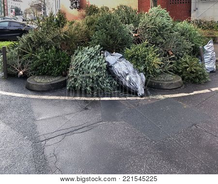 discarded christmas trees piled on street curb for garbage collection in Germany poster