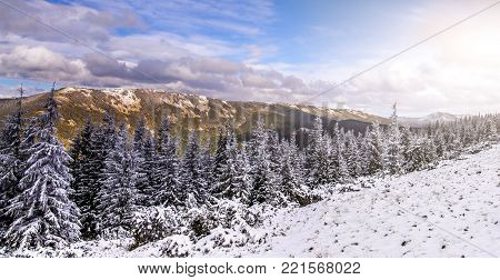 wonderful winter landscape. panorama- snow cowered alp pine and blue perfect sky with clouds in hte mountain. Picturesque and gorgeous wintry scene