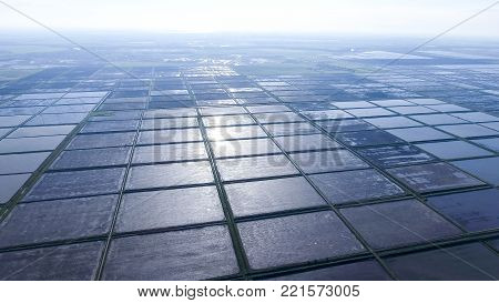 Flooded rice paddies. Agronomic methods of growing rice in the fields. Flooding the fields with water in which rice sown. View from above.