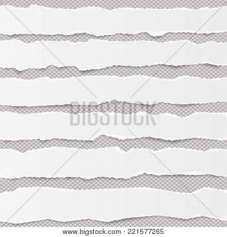 White torn blank horizontal note paper strips for text or message stuck on gray background with shadows
