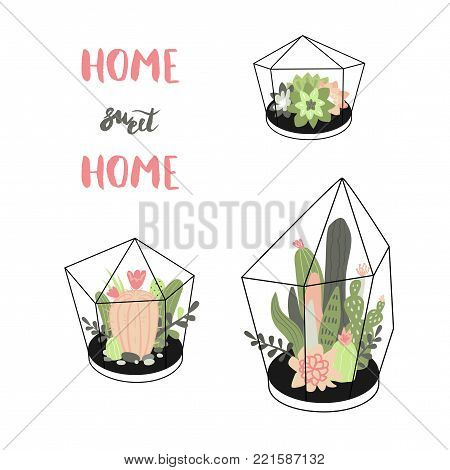 Home, sweet, home. Vector set with cute cactuses and succulents in terrariums. Illustration with home plants in scandinavian style.