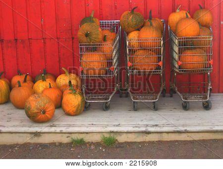 Pumpkin Trolleys