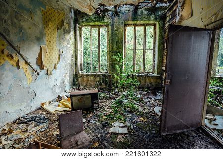 Interior of overgrown by vegetation room of abandoned and forsaken apartment house. Green post-apocalypse concept.