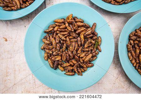 Asian fried insect food in Luang Prabang, Laos