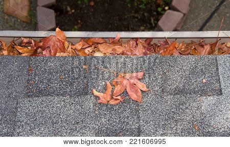 Close up on section of rain gutter on residential home, clogged with leaves. debris like leaves, twigs can clog your gutter system, causing potential harm to your house, landscaping and the gutters.