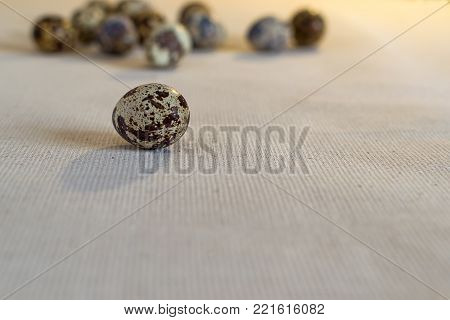 Quail egg on a linen fabric on a background of blurred group of eggs in the background. Still life in warm tones, the view from the side on level of eye look.