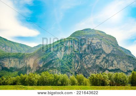 a mountain peak with a green forest