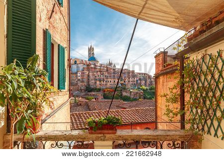 Beautiful view of Dome and campanile of Siena Cathedral, Duomo di Siena, and Old Town of medieval city of Siena in the sunny day through autumn leaves, Tuscany, Italy